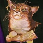 amycat-bookunive