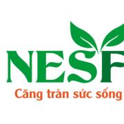 Nesfaco VN's avatar