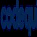 codequiry