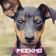 Peekmo