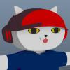 531KN avatar