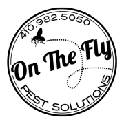 On The Fly Pest Solutions's avatar