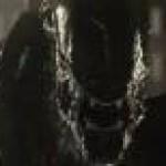 الصورة الرمزية وحش الليل2
