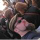 kride's avatar