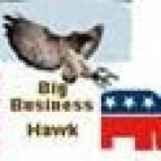 bigbusinesshawk