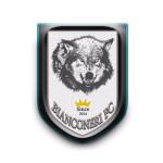 الصورة الرمزية BIANCONERI FC
