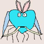 Profile picture of niko