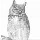 13vs14's avatar