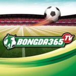Profile picture of Bongda365 TV