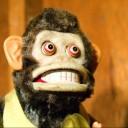 lorem monkey