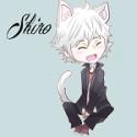 shiroyin-avatar