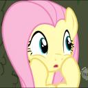RomeDavid's avatar