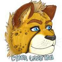 Cybercheetah