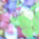 yutakalamia's avatar