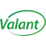 Profile picture of valant
