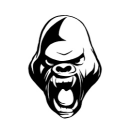 Profile picture of Gorilla Fight Gear