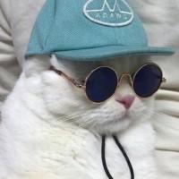 limabean avatar