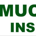 Muchmore Insurance