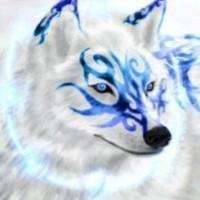 phxwolf