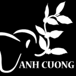 Profile picture of xethuedaklakanhcuong