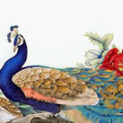Mee Tam's avatar