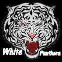 whitebeart-avatar