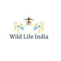 wildlifeindia