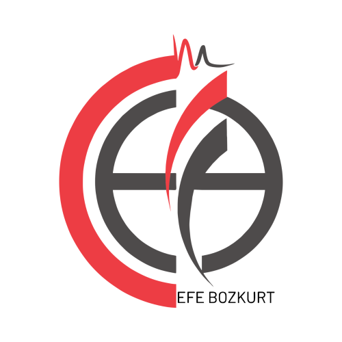 Mehmet Efe Bozkurt