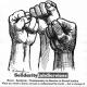 SolidarityInfoServices
