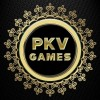 Profile picture of pkvgames