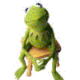 Profile photo of Kermit911