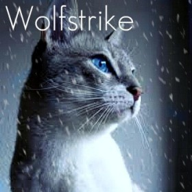 Profile picture of Wolfstar