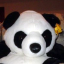 rboyer/ubuntu-trusty64-libvirt