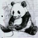 Panda-san's avatar