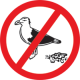 birdbgone