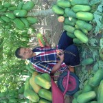 Profile picture of agro buah