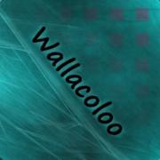 Wallacoloo