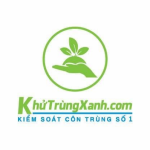 Profile picture of Khutrung xanh