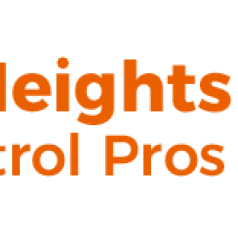 Profile picture of Citrus Heights Pest Control Pros