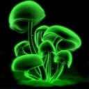 himbeeereiz's avatar