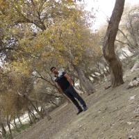 ابوالفضل احمدی