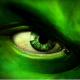 Tujak's avatar