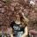 ElfOfVirtue avatar