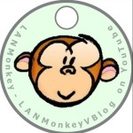 Profile picture of LANMonkey