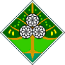 Noldorin