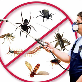 Profile picture of Get Pest Control