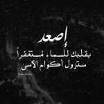 الصورة الرمزية mohammed1368