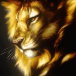 الصورة الرمزية lion_dentist