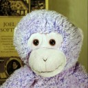 Fuzzy Purple Monkey avatar
