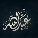 الصورة الرمزية عبدالله عساف